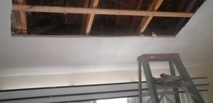 Mold Damage Restoration In Progress On Ceiling